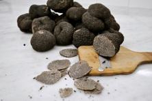 Black truffles menu from January 25th