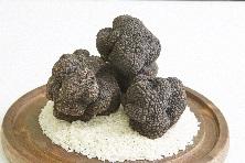 Black truffles menu from Jan. 24th