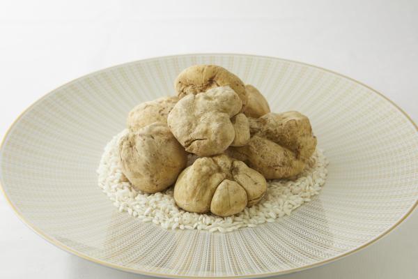 White Truffle Menu until Dec20th